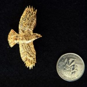 RED Tail Hawk Pin Contest Prize